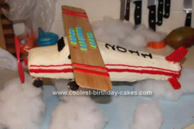Coolest Cessna Airplane Cake