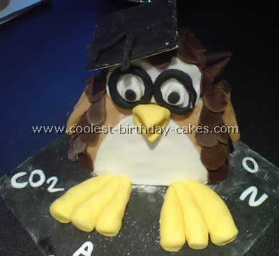 Owl Birthday Cake Decorating Idea