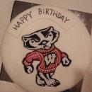University Emblems Birthday Cakes