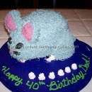 Chinchilla Birthday Cakes