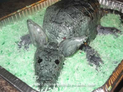 Homemade Armadillo Cake