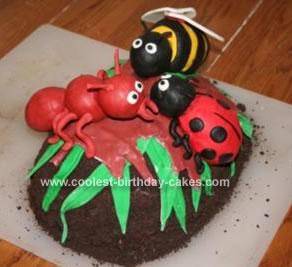 Homemade Bug Cake