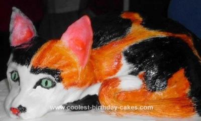 Homemade Calico Cat Cake