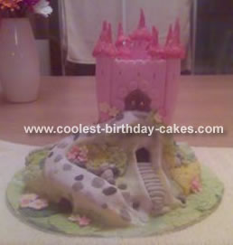 Castle Cake on a Hill