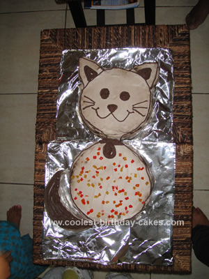 Homemade Cat Cake