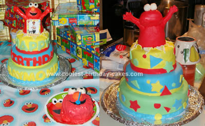 Walmart Bakery Birthday Cakes on Birthday Cakes Walmart On Coolest Elmo Birthday Cake 79