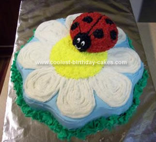 Homemade Flower And Lady Bug Cake