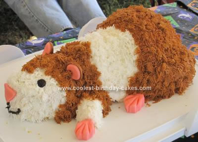 Picturebirthday Cake on Coolest Hamster Cake 2