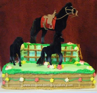 Homemade Horse and Pony Birthday Cake