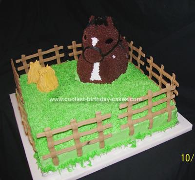 Homemade Horse Birthday Cake