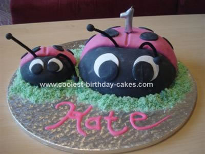 Kate's Ladybird Cake