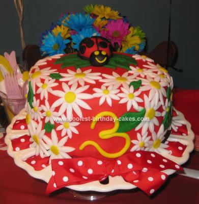 Homemade Ladybug 3rd Birthday Cake