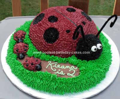 birthday cakes for girls 2nd birthday. Coolest Ladybug Birthday Cake