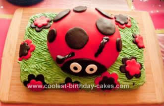 Homemade Ladybug Birthday Cake Design