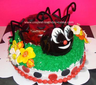 Homemade Ladybug Cake in the Garden