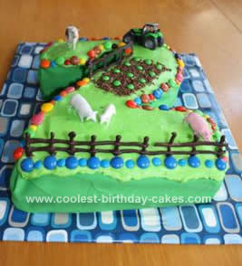 Homemade Out on the Farm Cake