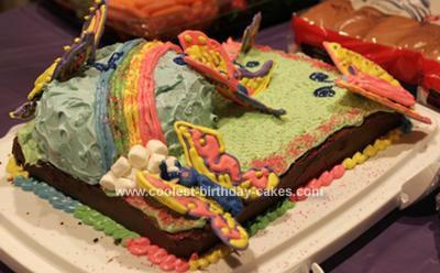 Homemade Rainbow and Butterflies Cake