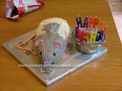 Homemade Rat Birthday Cake