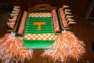 Homemade UT VOLS Stadium Cake