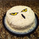 Hedwig the Owl Birthday Cakes