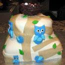 Wilderness Scene Birthday Cakes