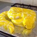 Snake Birthday Cakes