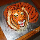 Tiger Birthday Cakes